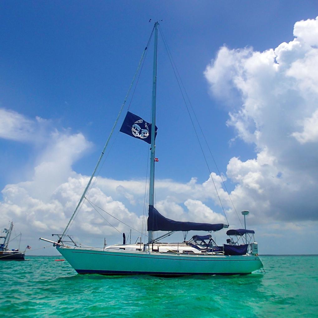 Alliance in the Bahamas
